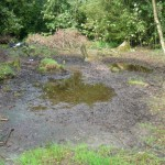 Pond_Drained_10-09-2010