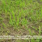 CRG 1 weeks growth taken 04-05-2014