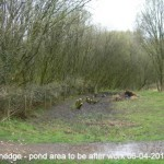 Dead Hedge - pond to be area after 06-04-2014